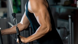 Muscle building at GYM